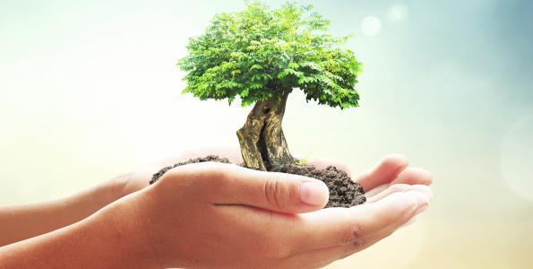 Vårt arbete för miljön